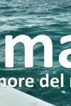 Umar - il rumore del mare