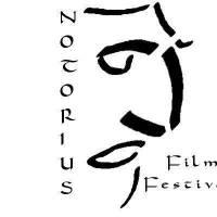 Ritratto di notoriusfilmfestival_10291